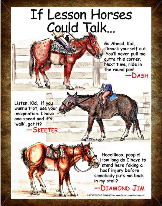 if lesson horses could talk
