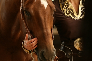 aqha rookie classes