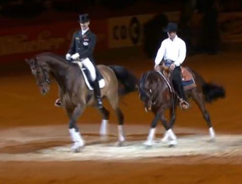 Reining vs Dressage – Magic! – The Horseaholic