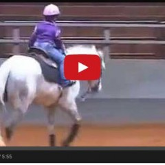 Every Little Girl Deserves A Horse Like This – How Precious!