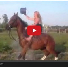 Watch What Happens When You Take The Ice Bucket Challenge On Horseback!