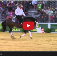 Shawn Flarida and Spooks Gotta Whiz Score 229 To Seal The Win For Team USA At World Equestrian Games!