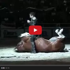 Watch The Funniest Horse Act Ever….Tommie Turvey and Pokerjoe!