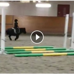 This Little Girl Riding Her Miniature Horse Are As Cute As It Gets!