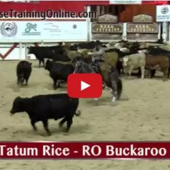 Watch NCHA Futurity Finalists Talk About The Horse That Got Them There!