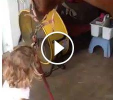 Watch This Toddler Brush Her Favorite Quarter Horse – Adorable!