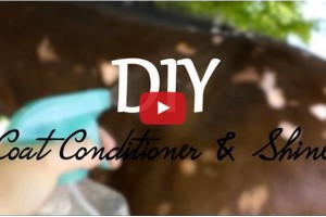 diy coat conditioner