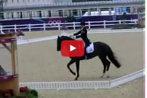 dressage freak out