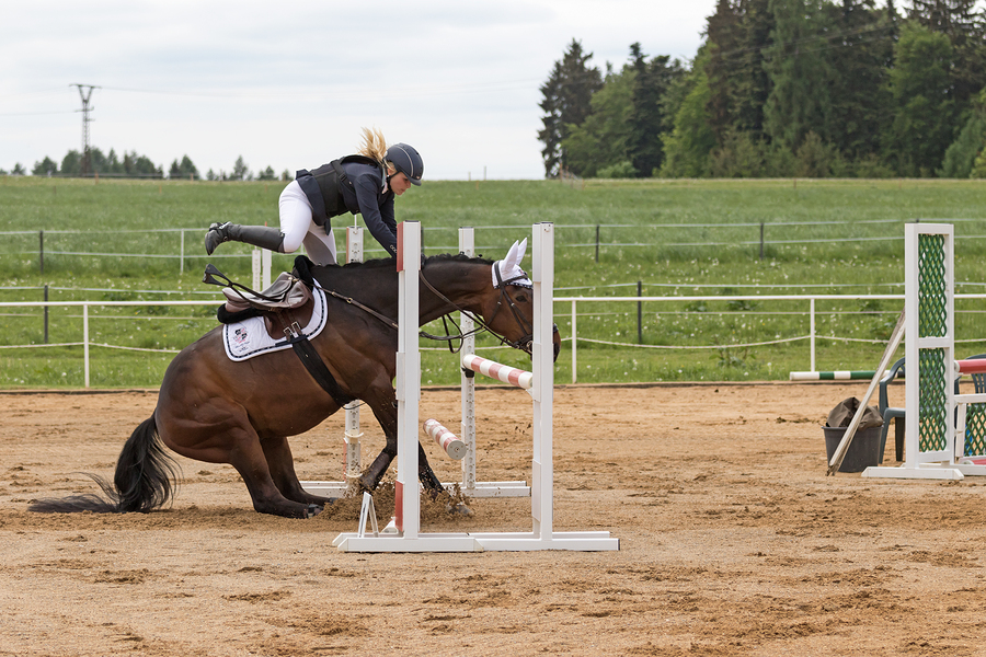 The Dramatic Situation At Equestrian Competition