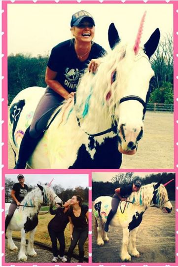 Horses Give Miranda Lambert The Best Birthday Ever The