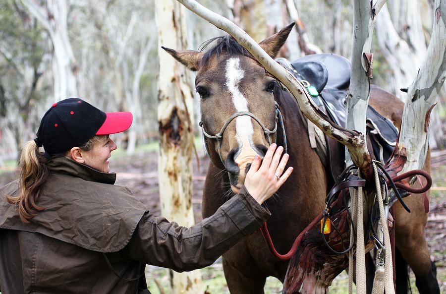 Female Rider horse camping