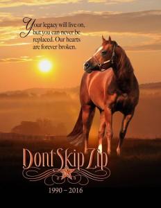 Cooper Quarter Horses Facebook