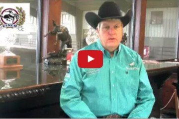 evaluating reining prospects