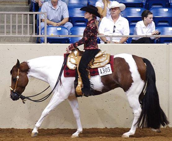 Brandy Smith - DIY Amateur Rider