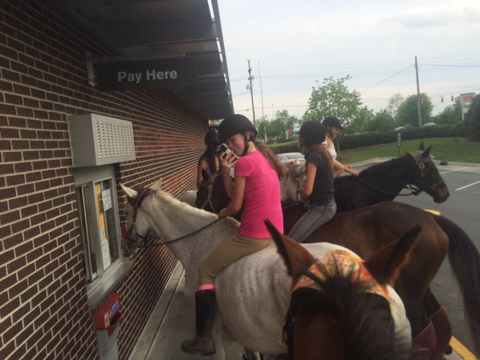 thoroughbred drive through 2