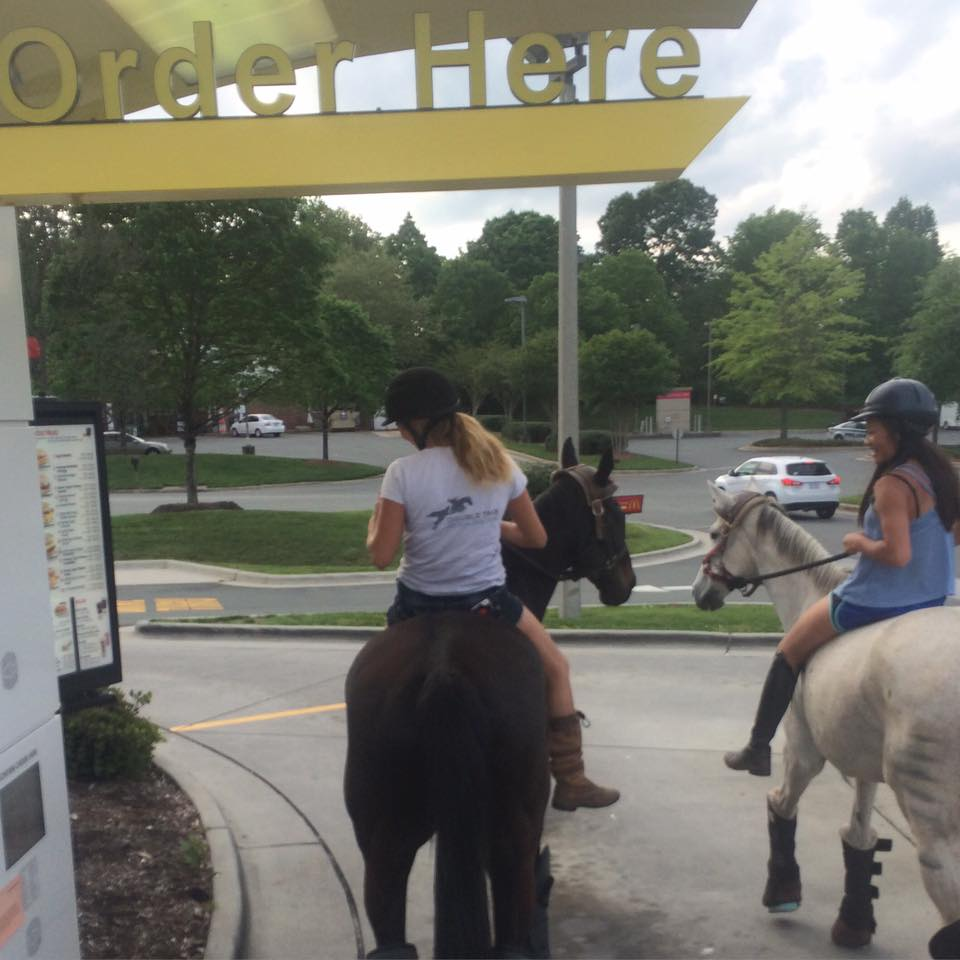 thoroughbred drive through