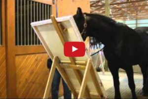 horse self portrait