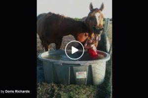ranch-kids