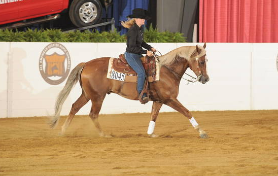 Elizabeth and her horse showing at the All American Quarter Horse Congress. Source: OQHA.