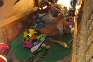 horse-rescue-from-hay-loft