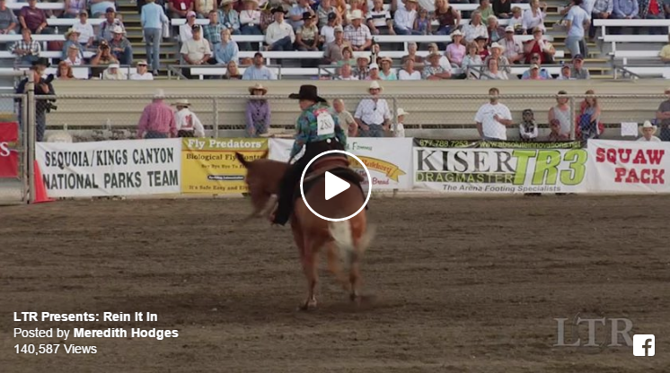 Mules Compete In Reining Awesome The Horseaholic